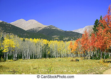 couleur, colorado