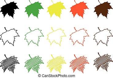 couleur, ensemble, feuille, sycomore