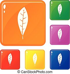 couleur, feuille, vecteur, ensemble, icônes