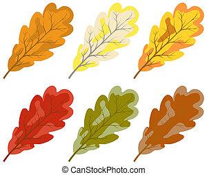 couleur, feuilles automne, collection