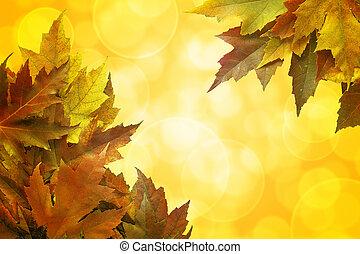 couleur, feuilles, fond, automne, frontière, érable