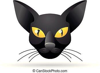 couleur, icône, -, chat