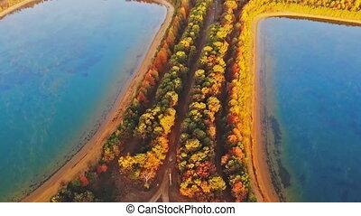 couleur, niveaux, automne, matin, brumeux, lac