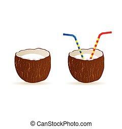 couleur, noix coco, vecteur, art, illustration