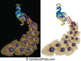 couleur, peacoc