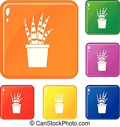 couleur, succulent, vecteur, ensemble, icônes