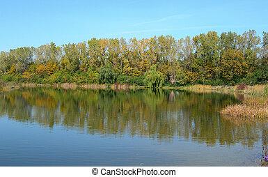 couleurs, étang, automne