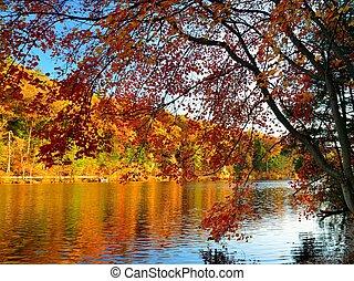 couleurs, glorieux, automne