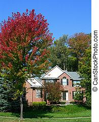 couleurs, maison, automne