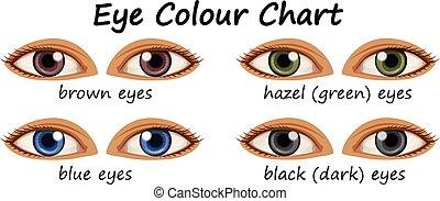couleurs, yeux, humain, différent