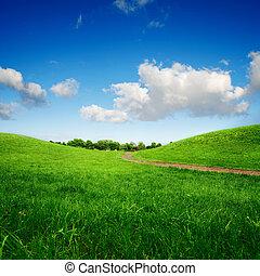 couloir, éloigné, herbeux, arbres, collines vertes