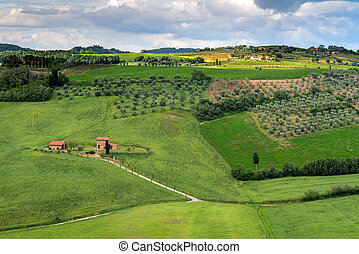 Counrtside of Val d'Orcia Tuscany
