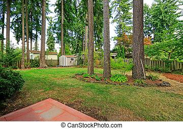 Counryside house backyard with trees