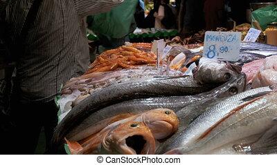 Counter with Seafood in Ice at La Boqueria Fish Market....