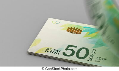 Counting New Israeli Shekel