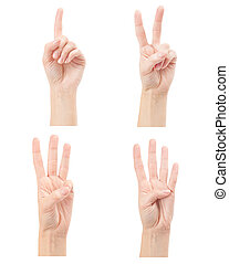 Counting woman hands (1 to 4) isolated on white background