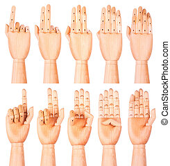 Counting wooden hands (1 to 5)