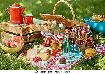 Country barbecue or picnic in a spring meadow