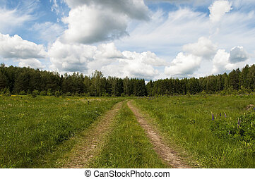 Country dirt road to the forest