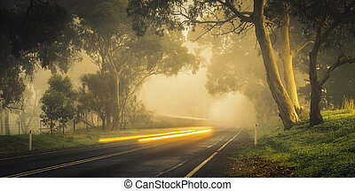 Country Drive - A car zooms by on a misty morning in the ...