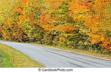 Country Drive - Autumn