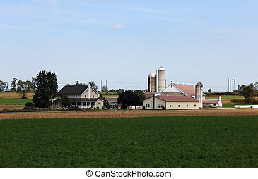 Country Farm Landscape