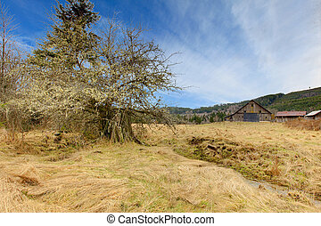 Country farm landscpae with large barn and mountains - Build...