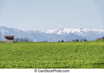 Country landscape in Brianza