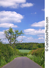 English country lane on a beautiful summers day
