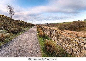 Country Lane in Dartmoor