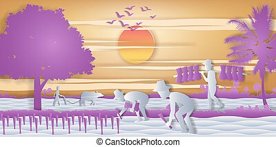 country life of Asia farmer plant rice while a man carry rice seedling and another plow field by buffalo on sunrise time, vector illustration