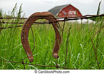Country Luck - Rusty horseshoe on a barb wire fence.