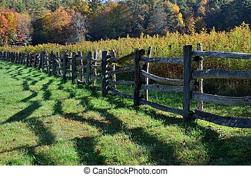 Country rail fence shadows