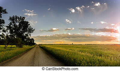 Country Road - A Midwest, South Dakota country gravel road