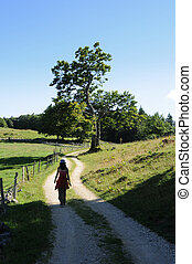 country road and person