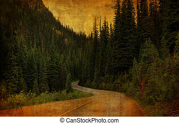 Rural country wimding road with tall evergreens lining both sides with dirty grunge effect.