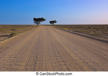 Country road in Africa (Namibia) leading to the horizon.
