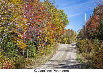 A country road leads through a forest of fall color - Haliburton Highlands, Ontario, Canada