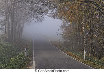 Country road in autumn with dense fog