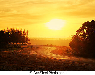country road in evening