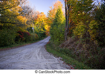 Country Road in Fall - Forested Country Road in Fall