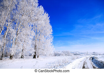 Country road in snow winter landscape. Snowy country lane Nature
