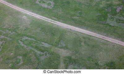 Country road in summer. West Siberian Plain. Omsk region.