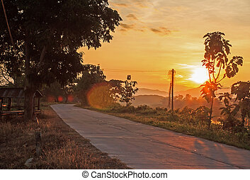 Country road in the evening