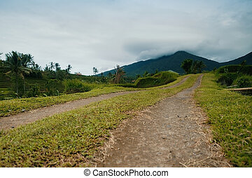 Country road in the mountains