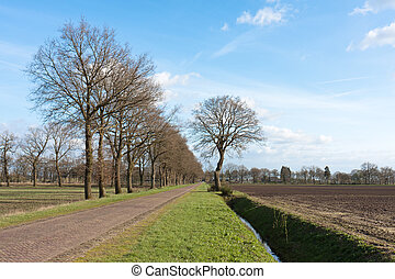 Country road in the Netherlands with bare farmland