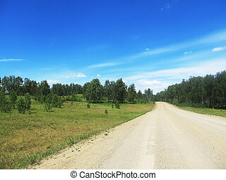 country road in the summer