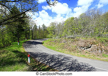 Country road in the Vosges Mountains