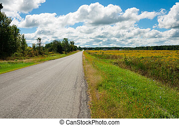 Country road in