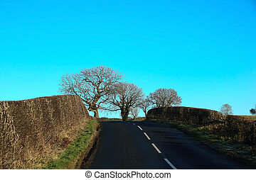 Country Road in Winter in Scotland - Country road in...